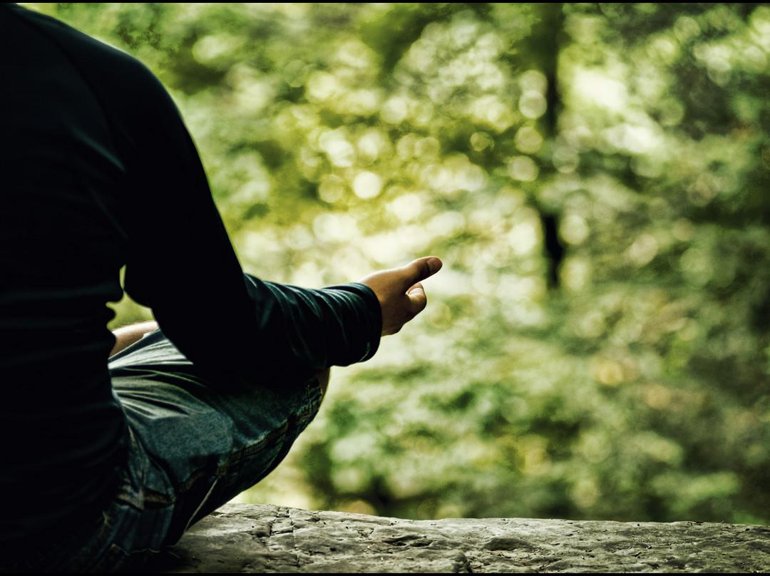 La voz del silencio o cómo lograr un estado de felicidad