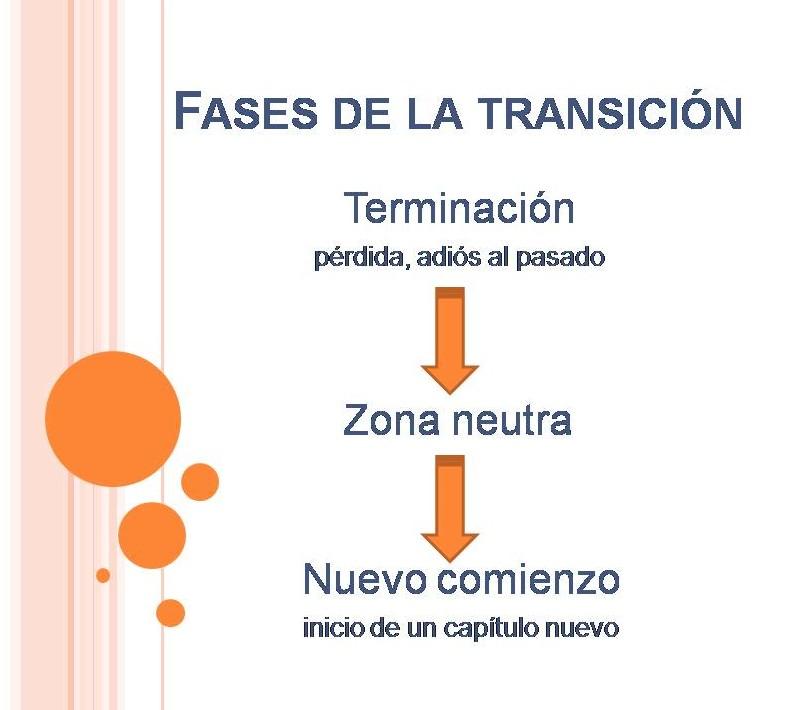 Fases de la transición - Constelaciones Familiares